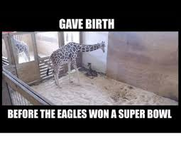 Philadelphia Eagle Memes - gave birth before the eagles won a super bowl philadelphia eagles