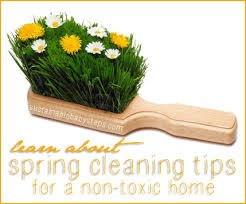 spring cleaning tips for a non toxic home sustainable baby steps