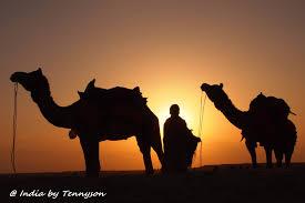 thar desert impressions of india u2013 thar desert present moment