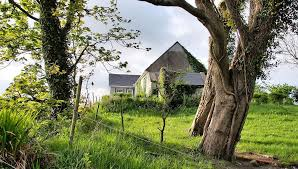 Holiday Cottages Ireland by What To Do In Knockerra Kilrush Co Clare Bluebell Cottage