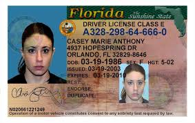 Florida Drivers License Template fantastic florida id template ensign documentation template
