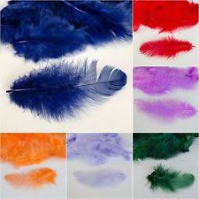 Table Decorations With Feathers Decorative Feathers Ebay