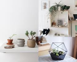 Home Plant Decor by Houseplants And Boho Decor Inspiration Lfb