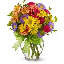cheap flowers cheap flowers inexpensive flowers flowers on a budget schaefer