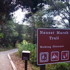 Nauset Marsh Cape Cod - hiking trails cape cod national seashore u s national park