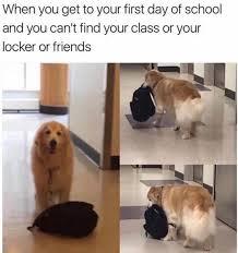 Confused Dog Meme - 40 dank memes of the week funny gallery ebaum s world