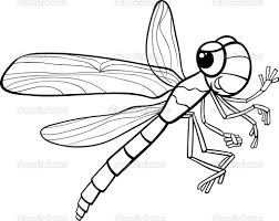 5 creative dragonfly coloring page ngbasic com