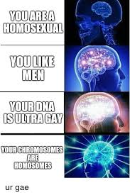 Ultra Gay Meme - youarea homosexual you like men your dna s ultra gay your