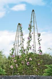 garden design garden design with painted obelisks wooden garden