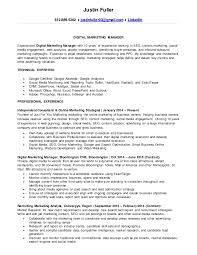 Digital Marketing Consultant Resume Justin Fuller U0027s Resume Digital Marketing Manager