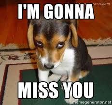 Sad Dog Meme - bye dog meme dog best of the funny meme