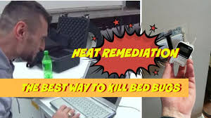 The Best Way To Kill Bed Bugs Best Way To Kill Bed Bugs Vnproweb Decoration
