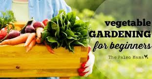 vegetable gardening for beginners the paleo mama