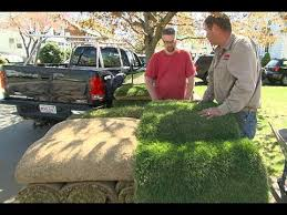 a backyard how to lay sod in a backyard youtube