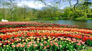 pictures of beautiful gardens with flowers top 10 most beautiful gardens in the world youtube