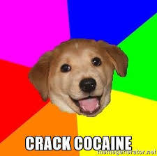 Crack Cocaine Meme - crack cocaine advice dog meme generator