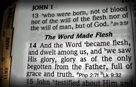 verses bible john 1 14 thepreachersword