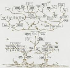 115 best genealogy and lineage charts images on family