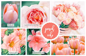 Peach Flowers 42 Spring Flowers Inspired By Pantone Colors Of The Year