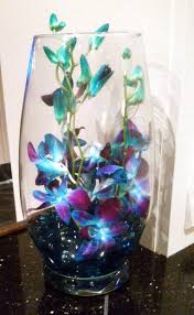 Orchid Decorations For Weddings Beautiful Orchid Centerpieces 5 Steps