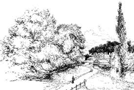 tree drawings and how to draw them realistically