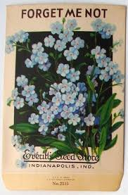 forget me not seed packets forget me not vintage seed packet search forget me not