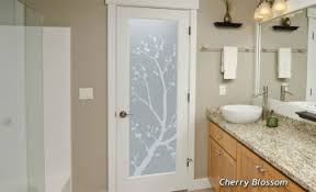 Interior Bathroom Door Door Glass Inserts Sans Soucie Glass