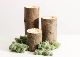 Tree Branch Candle Holder Diy Christmas Ornaments From Your Garden Cape Contours