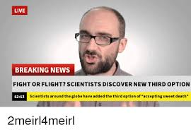 Breaking News Meme - live breaking news fight or flight scientists discover new third