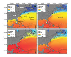 Map Of The Northeast Nefsc Science Spotlight Study Of White Sharks In The Northwest