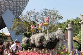 Mickey Mouse Topiary Experience The 2012 Epcot International Flower U0026 Garden Festival
