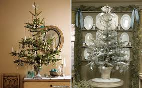 ask design potted trees design