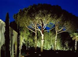landscaping solar lights reviews landscape lighting ideas for