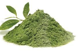 Teh Hijau iniloh manfaat teh hijau untuk kecantikan kamu harus tau til