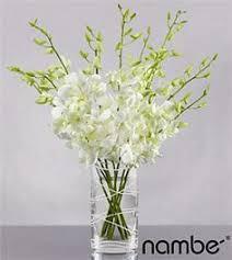 wholesale flowers orlando 6 x 6 white glass cylinder vase reception decor