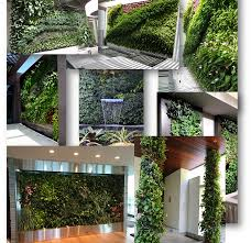 Vertical Gardens Miami - miami vertical gardens u0026 living walls portfolio projects gallery