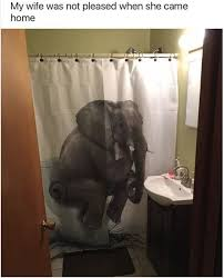 Science Humor Shower Curtains Science Humor Fabric Shower 16 More Funny Shower Curtains Yeah You Read That Right More