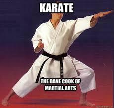 Meme Karate - karate the dane cook of martial arts karate quickmeme