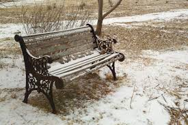 free images grass snow cold winter wood bench chair seat