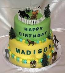 Horse Birthday Decorations Birthday Cakes Pictures Ideas And Recipes
