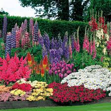 bright and colorful flower garden a kincaid garden tag is the