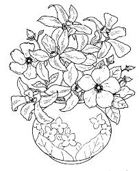 photos flower vase pictures to color drawing art gallery