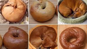 Puppy Meme - new meme asks if these circles are bagels or puppies