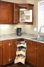 Countertop Organizer Kitchen Outstanding Blind Corner Cabinet Organizer U2013 Blckprnt