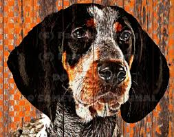 Tennessee Vols Home Decor Smokey The Bluetick Hound Print On Canvas Rustic Tennessee
