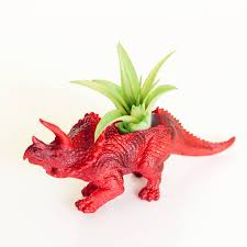 Animal Planter by Hand Painted Triceratops Dinosaur Planter With Plant By Dingading