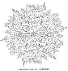 autumn mandala autumn leaves on white stock vector 666673426
