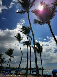 10 amazing reasons to go to hawaiicon laughingplace com