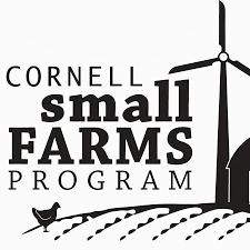 Small by Cornellsmallfarms Youtube