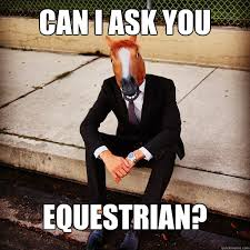 Horse Head Meme - can i ask you equestrian horse head greg quickmeme